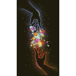 NDK 6704 Zestaw z koralikami - Neonowa magia