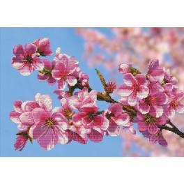 NCP 3262 Zestaw do haftu z podmalowanym tłem - Sakura