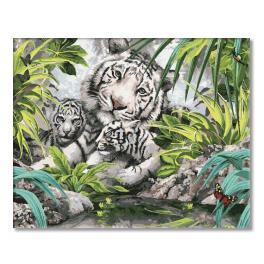 PC4050100 Malowanie po numerach - Tygrysy syberyjskie