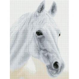 DQ8.009 Zestaw do diamond painting - Arabska piękność