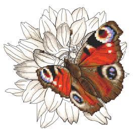 W 10330 Wzór do haftu PDF - Motyl i kwiat dalii