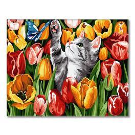 GX27243 Malowanie po numerach - Tulipanowy kotek