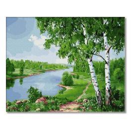 PC4050655 Malowanie po numerach - Brzozy nad rzeką
