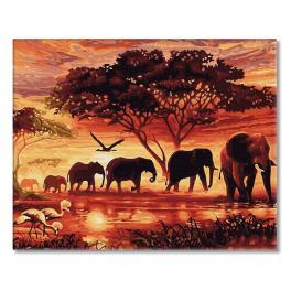 PC4050802 Malowanie po numerach - Duch Afryki