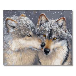 PC4050810 Malowanie po numerach - Miłość pośród wilków